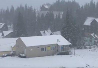 Карпати засипало снігом (відео)