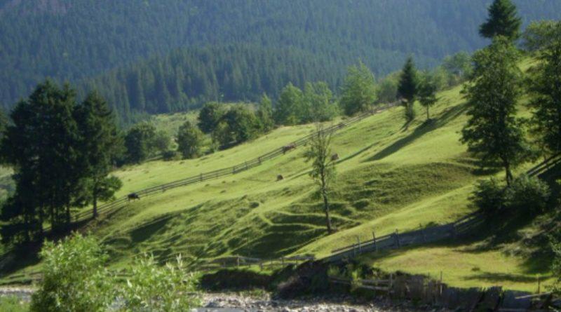 Мандрівка за пейзажами: на Закарпатті презентували унікальний культурний маршрут