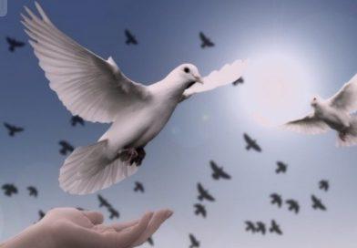 «Хто володіє інформацією, той володіє світом»