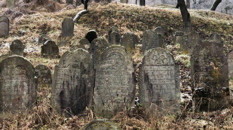 Серед лісу на Закарпатті виявили закинуте  єврейське кладовище