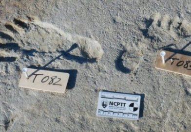 Учені знайшли у США людські сліди, яким понад 20 тисяч років